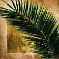 Tropical Palm by Lourry Legarde