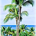 Tropical Palm Trees In Hawaii by Athena Mckinzie