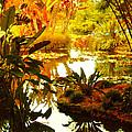 Tropical Paradise by Amy Vangsgard