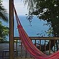 Tropical Paradise... by Nina Stavlund