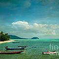 Tropical Seas by Adrian Evans