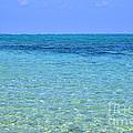Tropical Seascape by Kennerth and Birgitta Kullman