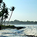 Tropical Shore by Lori Seaman