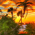 Tropical Sunset by Debbi Granruth