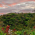 Tropical Sunset Landscape by Peggy Collins