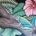 Tropical Tree Frog by Devon Wilson