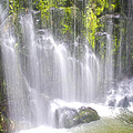 Tropical Waterfall by Venetia Featherstone-Witty
