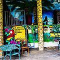 Tropics In Ok by Angus Hooper Iii