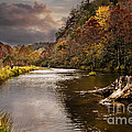 Trout Fishing by Tamyra Ayles