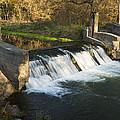 Trout Run Creek Dam 1 by John Brueske