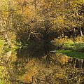 Trout Run Creek Fall 2 by John Brueske