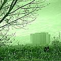 Truckee Meadows by Bobbee Rickard