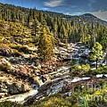 Truckee River  by Janna and Kirk Davis