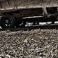 Trucks by Branden Simons