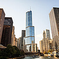 Trump Tower And Downtown Chicago Buildings by Paul Velgos