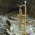 Trumpet N Canvas by Jon Neidert