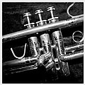 Trumpet Triptych by Photographic Arts And Design Studio