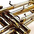Trumpet Valves by  Onyonet  Photo Studios