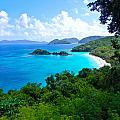 Trunk Bay by Mary  Swann