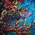Trunkfish - Male by Sue Duda