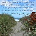 Trust In The Lord by Carol  Bradley