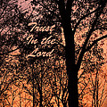 Trust In The Lord by Lorna R Mills DBA  Lorna Rogers Photography
