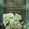 Trusting God by Carolyn Marshall