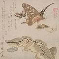 Tsubasa Ni Wa... From The Series by Kubo Shumman