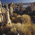 Ttufa Formations Mono Lake California by Gerry Ellis