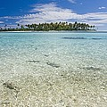 Tuamatu Islands by M Swiet Productions
