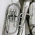 Tuba by Shaun Higson