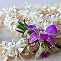 Tuberose Lei With Purple Orchid And Ribbon by Valerie Garner