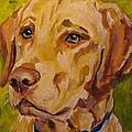 Tucker by Susan Elizabeth Jones
