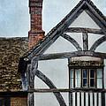 Tudor House by Jill Battaglia