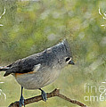 Tufted Titmouse With Decorations II by Debbie Portwood