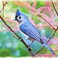 Tufted Titmouse With Spring Booms - Digital Paint II by Debbie Portwood