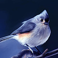 Tufty The Titmouse by Pennie  McCracken
