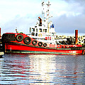 Tugboat Captain by Alanna DPhoto