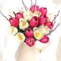 Tulip Blooms by Debra  Miller