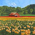 Tulip Farm by Dominic White
