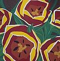 Tulip Festival by Kristina Zographos