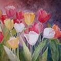 Tulip Garden by Sue Kemp