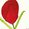 Tulip Of The Heart by Tracey Williams