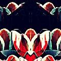 Tulip Panorama by Sarah Loft
