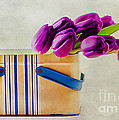 Tulips For Mom by Darren Fisher