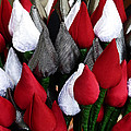 Tulips For Sale by Steve Taylor