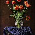 Tulips In A Crystal Vase by Endre Balogh