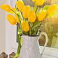 Tulips In Antique Jug by Amanda Elwell