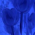 Tulips In Cobalt Blue by Dyle   Warren
