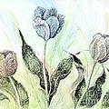 Tulips In Ink by Lizi Beard-Ward
